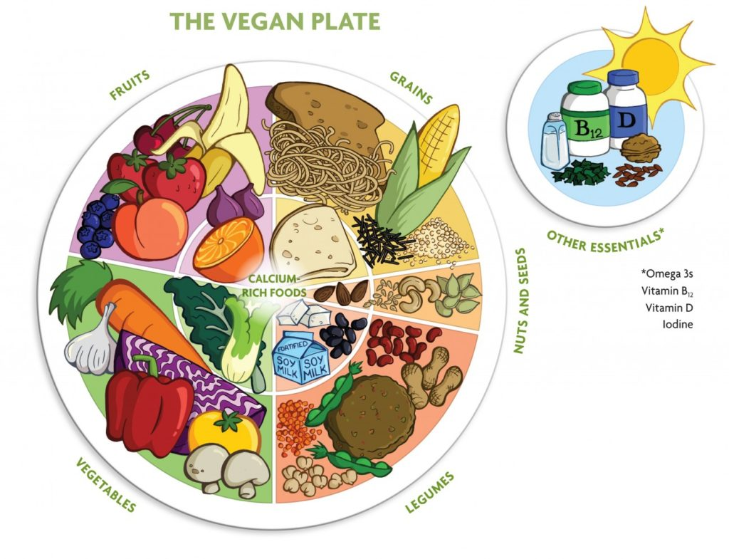 the vegan plate guide to healthy diet